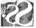 Ssaggio48 Logo
